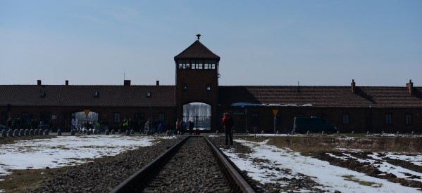 PRESS RELEASE: IJC Joins EFI Delegation to Historic International Holocaust Remembrance Day