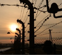 PRESS RELEASE: IJC to Partner with 'March of the Living' for Yom Ha'Shoah Events in Budapest & Auschwitz-Birkenau