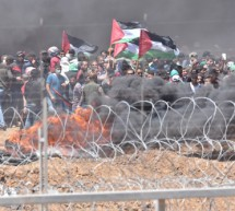 The Israeli-Jewish Congress Statement on Violence in Gaza